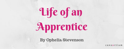 A Digital Marketing Apprenticeship Insight, by Ophelia Stevenson
